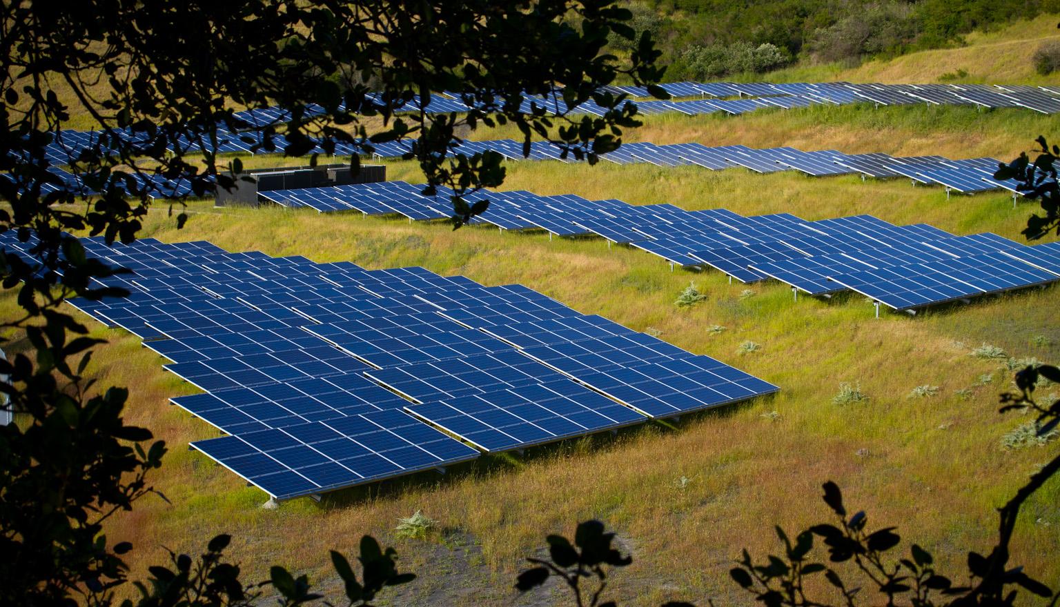 Solar Farm by Michael Mees via a CC BY 2.0